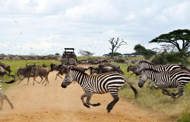 Arusha-National-Park-620x400