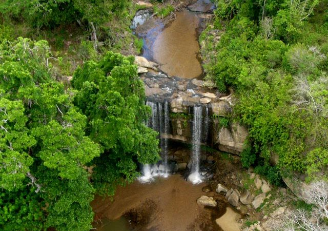 Shimba-Hills-National-Reserve