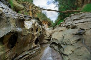 canyon_in_hell_s_gate_national_park