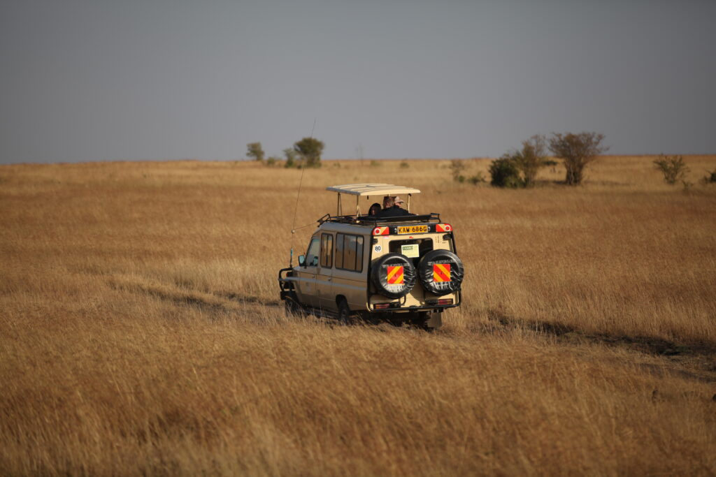 Jambo Landcruiser on savannah